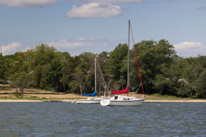 2015 PAC Sailing-7601