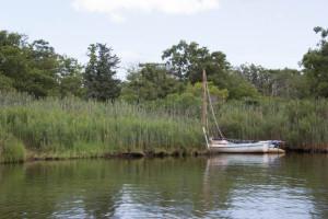 2015 PAC Sailing-7660
